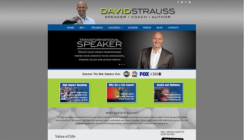 David Strauss 2015